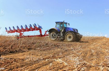 Close-up work of a combine harvester with a wheat field on a sunny day